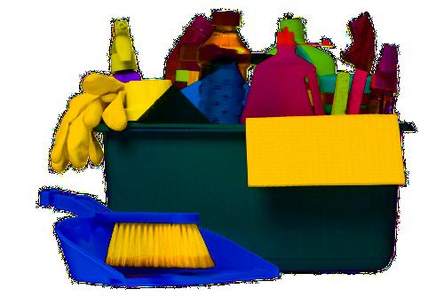 вредители и насекоми с почистване